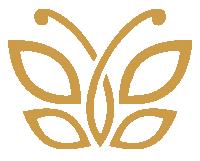 logo kimscut